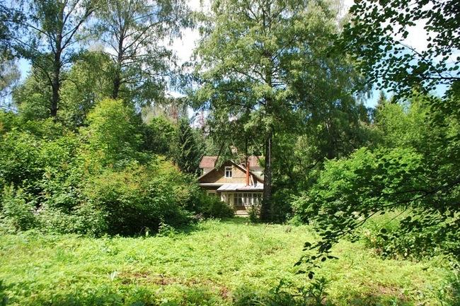 Фото: земельный участок 150 соток в трудовой ст, дмитровском районе, московской области - изображение 9
